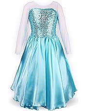 DaHeng Little Girl's Princess Elsa Fancy Dress Costume