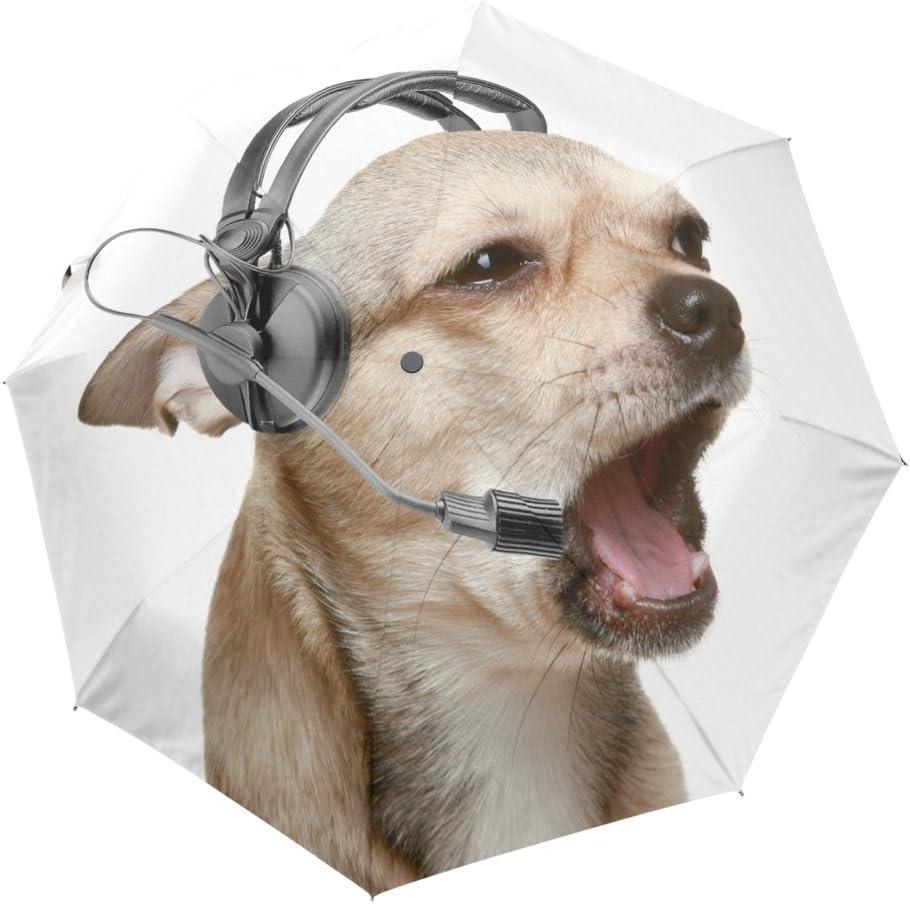 X-brella Womens//Ladies Doggy Automatic Dome Umbrella UM335