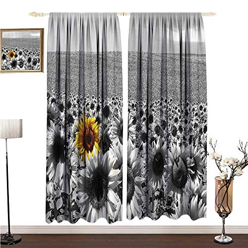 (Anshesix Extra Long Curtain Wide Tap Sunflower Field All Black and White with a Single Yellow Flower Spring Landscape Image W108 xL72 Soft Texture)
