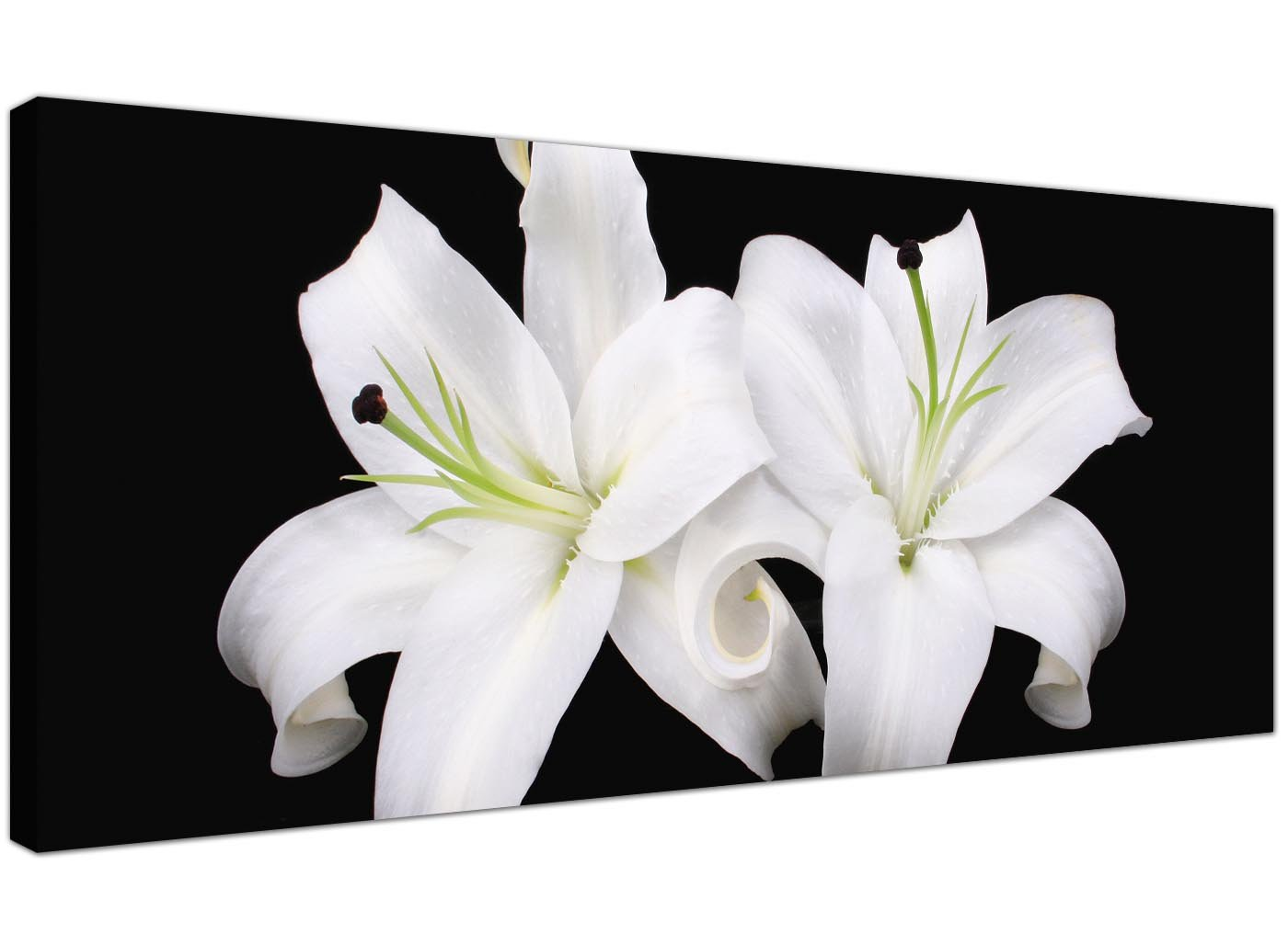 Wallfillers large black and white canvas prints of lily flowers wallfillers large black and white canvas prints of lily flowers trendy floral wall art 1128 amazon kitchen home mightylinksfo