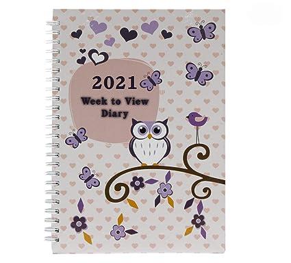 Amazon.com : 2021 A5 Week to View Diary Vintage Owl Design ...