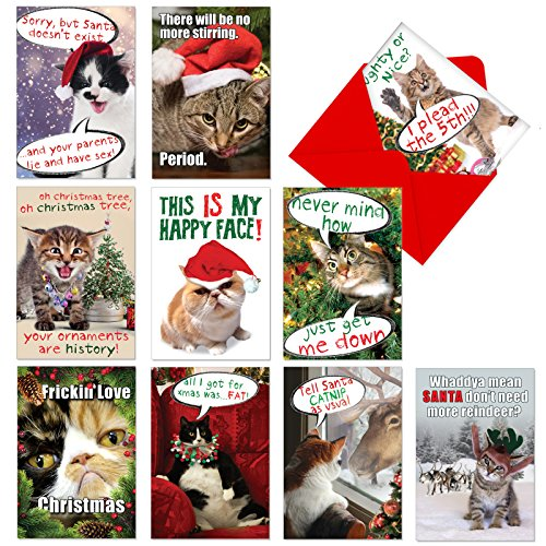 Vintage Style Christmas Card - A1254 PETIGREET CAT-MASS CARDS: Assorted Box Of 10 Hilarious Christmas Cards, W/12 Envelopes (10 Designs, 1 Card Per Design)
