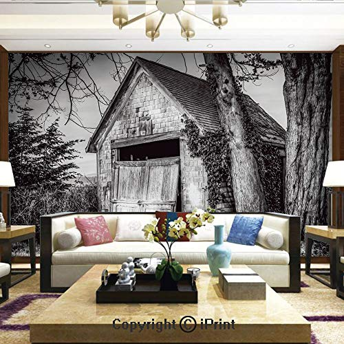 Wallpaper Nature Poster Art Photo Decor Wall Mural for Living Room,Old Ruined Stranded Stone Barn Farmhouse Rural Countryside Image,Home Decor - 100x144 inches ()