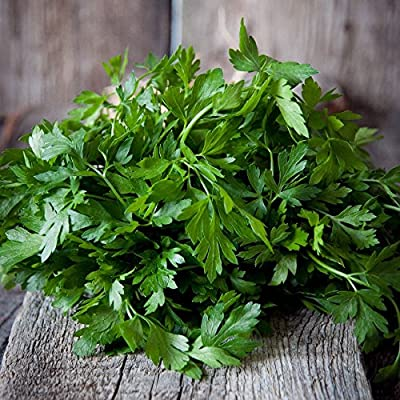 Parsley Elite Seeds, 250+ Premium Heirloom Seeds, Fantastic addition to your home garden!, (Isla's Garden Seeds), Plain Single, Non Gmo, Highest Quality Seeds: Kitchen & Dining