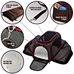 Expandable Pet Cat Carrier for Small Dogs and Cats – Soft Sided Crate – Airline Approved Medium Kennel Travel Bag – Fits Under or on Top of Seat – 2.8 lbs Dog Carriers with Bonus Blanket & Bowl