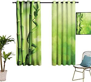 Mozenou Green,Grommet Curtains,Bamboo Stems Nature Ecology Sunbeams Soft Spring Scenic Spa Health Relaxation,Isolate Sunlight Dark Curtains,63x72 Inch Green Light Green