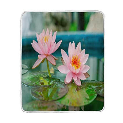 Amazon alaza home decor beautiful lotus flower lake blanket alaza home decor beautiful lotus flower lake blanket soft warm blankets for bed couch sofa lightweight mightylinksfo