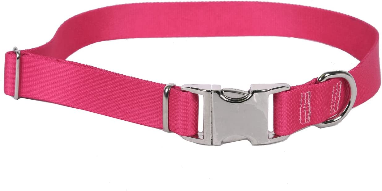 Sterling Solid Collection Yellow Dog Design Collars All Colors and Sizes