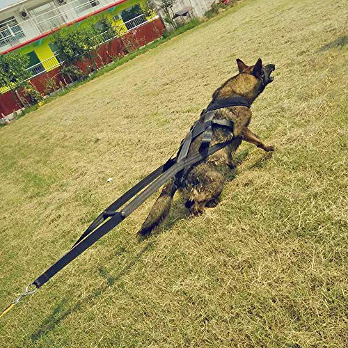 Buy Pet Artist Dog Weight Pulling Training Harnesses For