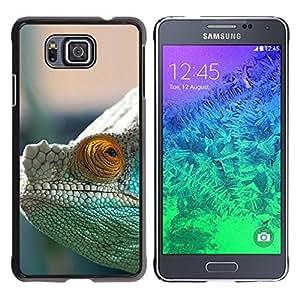 A-type Arte & diseño plástico duro Fundas Cover Cubre Hard Case Cover para Samsung ALPHA G850 (Camaleón Misteriosa)