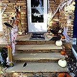 IMOSA Halloween Realistic Handmade Crow Prop Crow