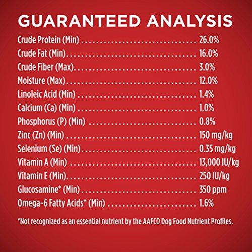 Purina ONE Natural Dry Dog Food, SmartBlend Lamb & Rice Formula - 31.1 lb. Bag