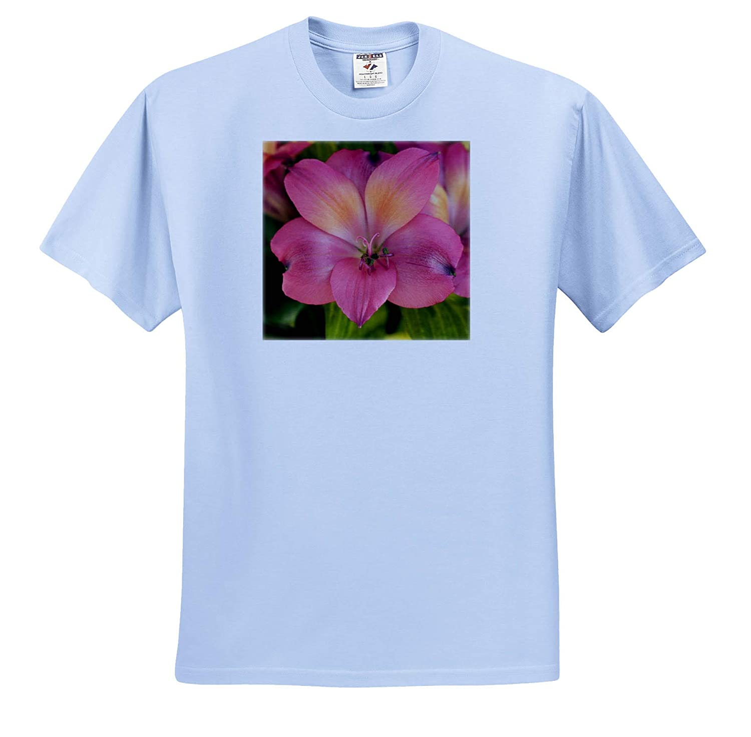 3dRose Stamp City Flowers Close up Photograph of a Beautiful Lily Flower in a Bouquet - T-Shirts
