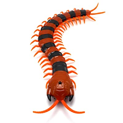 Tipmant Simulation Large Size RC Centipede Scolopendra Infrared Remote Control Vehicle Car Animal Insect Electric Toy Kids (Orange Striped): Toys & Games