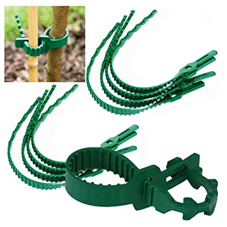 Plant Ties, Heavy Duty Adjustable Garden Supplies Green Fixing Buckle Tree Reusable Plant Ties for Shrub Rose Tree Plant Support