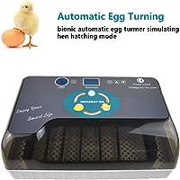 4YANG Incubadora de Huevos, Incubadora de Transferencia automática