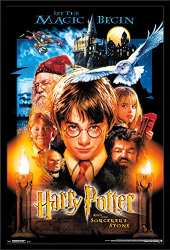 Trends International Wall Poster Harry Potter Sourcerer's St