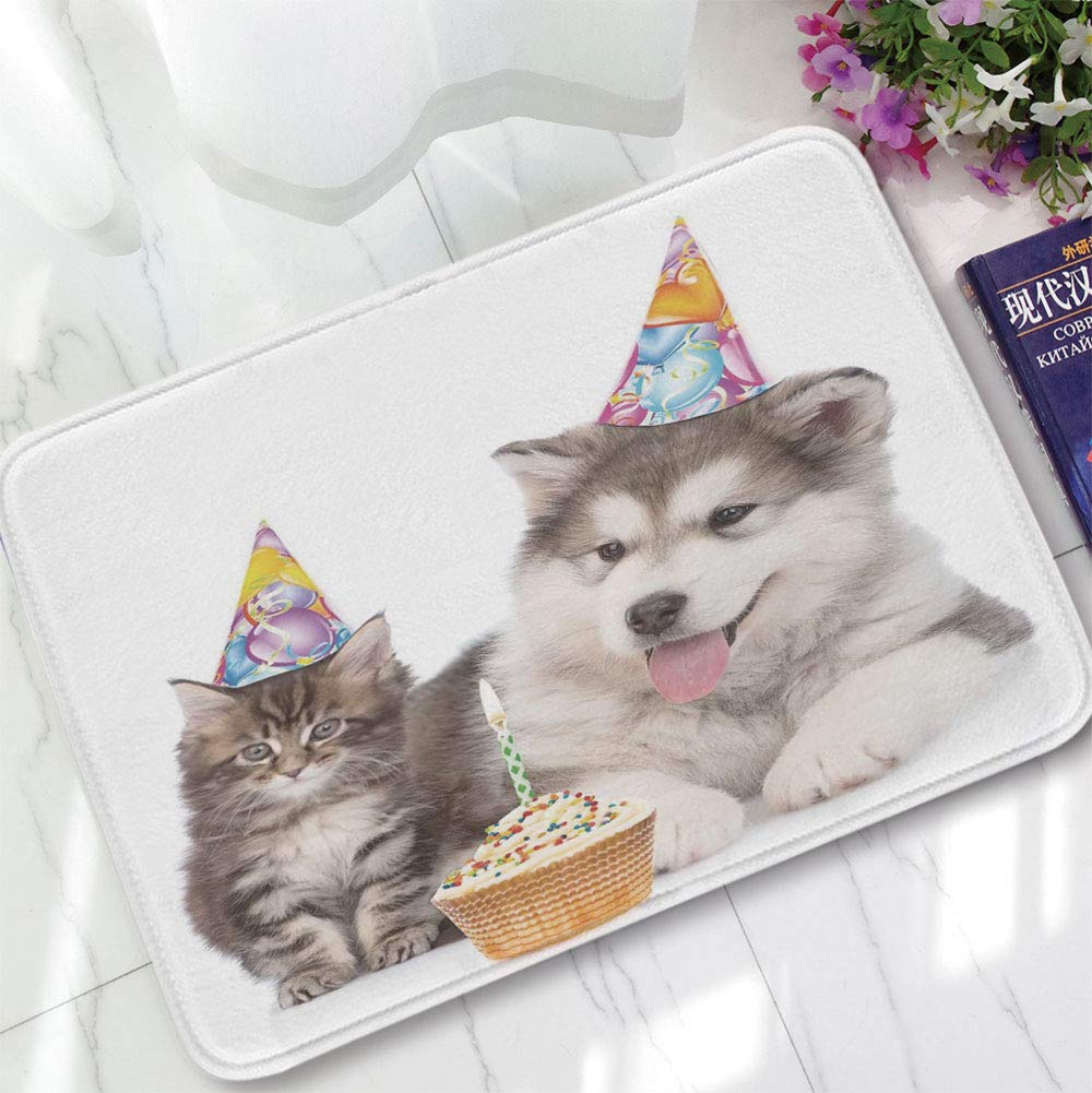 YOLIYANA Non-Slip Mat,Birthday Decorations for Kids,for Bathroom Kitchen Bedroom,15.75''x23.62'',Dog and Cat with Birthday Party