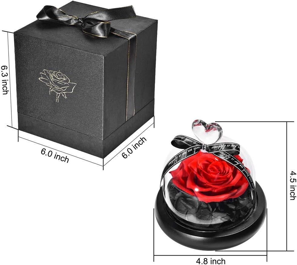 Blu 5.1inch HELA Fiore conservato Rosa Eterna con luci a LED e Confezione Regalo