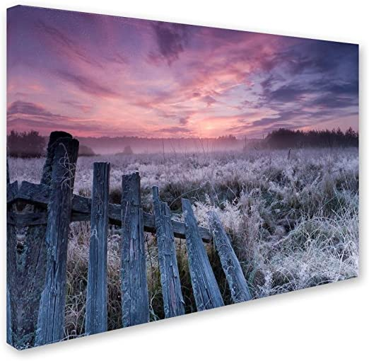 Amazon Com Dawn Of Bialowieza Meadows By Krzysztof Lorant 35x47 Inch Canvas Wall Art Home Kitchen