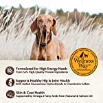 Wellness-CORE-Natural-Grain-Free-Dry-Dog-Food-Small-Breed-12-Pound-Bag