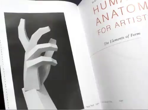 Human Anatomy For Artists The Elements Of Form Eliot Goldfinger