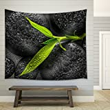 wall26 - Top Down Closeup Beautiful Spa Composition of Green Branch Bamboo on Zen Basalt Stones - Fabric Wall Tapestry Home Decor - 51x60 inches