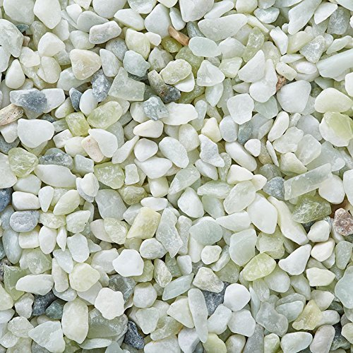 """JADE"" (Light Green) Bean Pebbles (5lbs Bag) 1/5"" Aquarium, Terrarium, Decoration, Landscape, Vase or Pot Fill One Stop Outdoor"