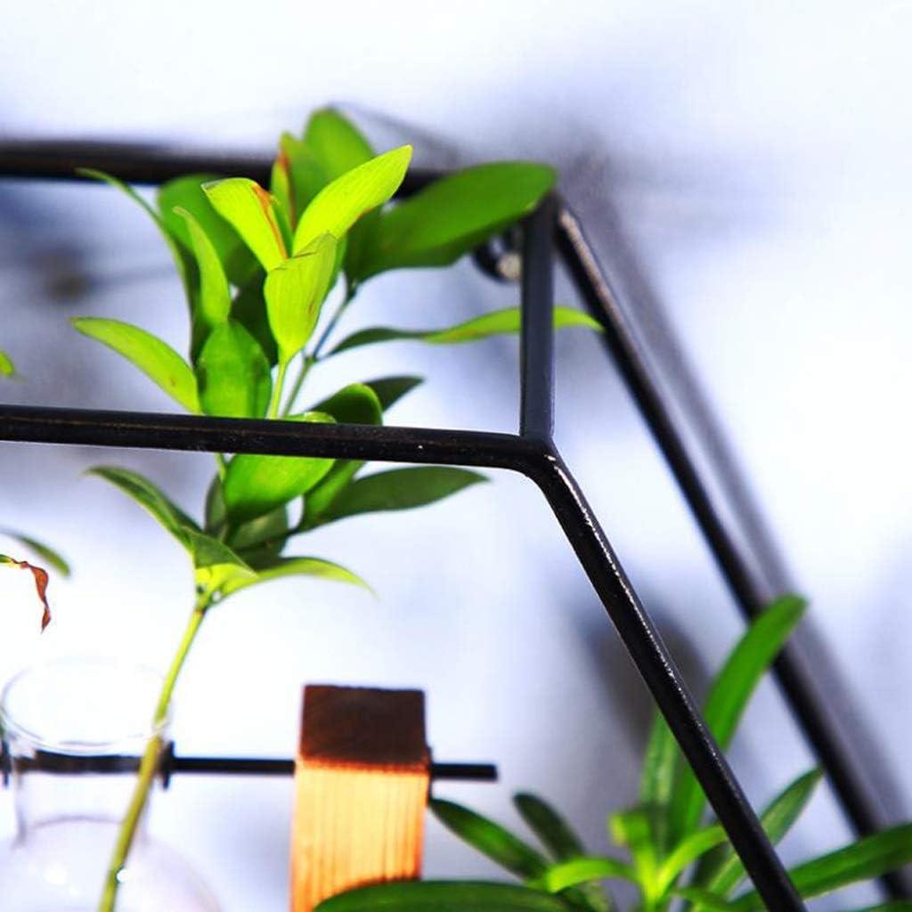 Color : Negro Huahua Furniture Estanter/ía Flotante Estante de Pared Hexagonal de 4 Niveles Almacenamiento Shabby Chic Display Estantes Decorativos Unidad Estanter/ía de Sala de Estar