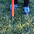 Solid Sports Agility Poles (Set of 12), 1-Piece