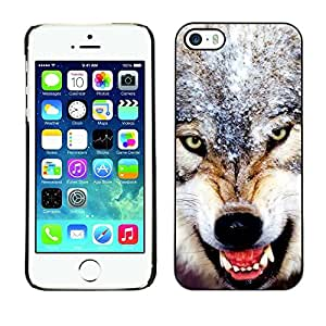 Be Good Phone Accessory // Dura Cáscara cubierta Protectora Caso Carcasa Funda de Protección para Apple Iphone 5 / 5S // Angry Ferocious Wolf Teeth Snow Winter