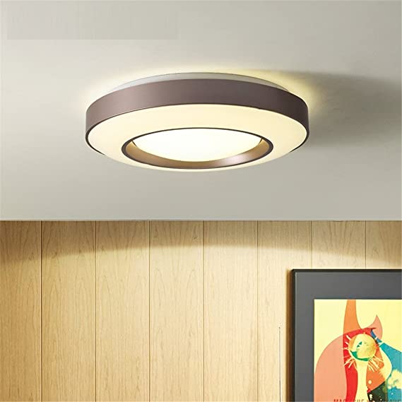 Amazon.com: CGHYY Lámpara de techo LED romántica ...