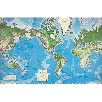 Amazoncom Globe Mural Home Kitchen - Toys r us wall maps and globes