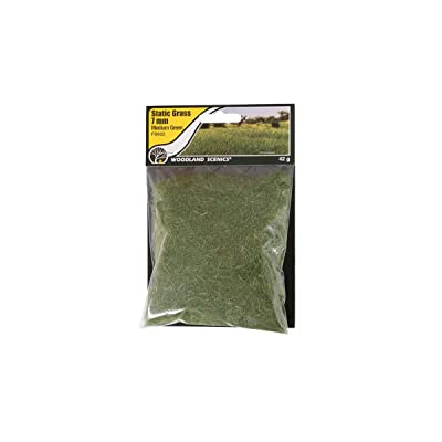 Woodland Scenics FS622 Static Grass, Medium Green 7mm: Toys & Games