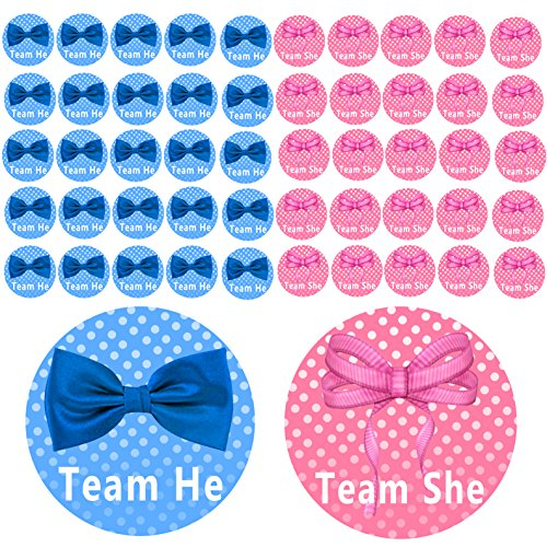 Qyler Gender Reveal Party Labels Baby Shower Voting Stickers (Team Blue & Team -