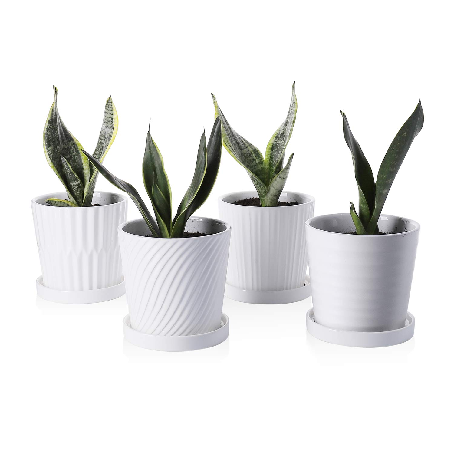 Greenaholics Plant Pots - 5.2Inch Cylinder Ceramic Planters with Connected Saucer, Pots for Succuelnt and Little Plants Set of 4, White