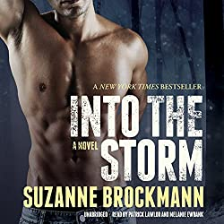 Into the Storm: A Novel