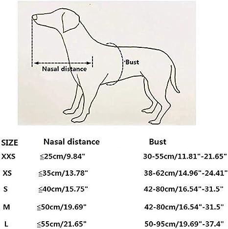 DishyKooker - Anillo anticolisión para Animales de compañía Ciegos ...