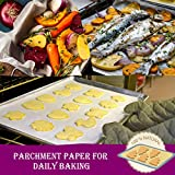 Hiware Parchment Paper Roll for Baking, 12 in x 240