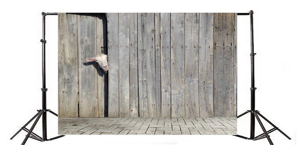 YongFoto 2,2x1,5m Telón de Fondo Cabra Curioso Que Mira A Escondidas A Través Puerta Cobertizo Madera Shabby Rustic Rural Gray Texture Fondo para Fotografia ...