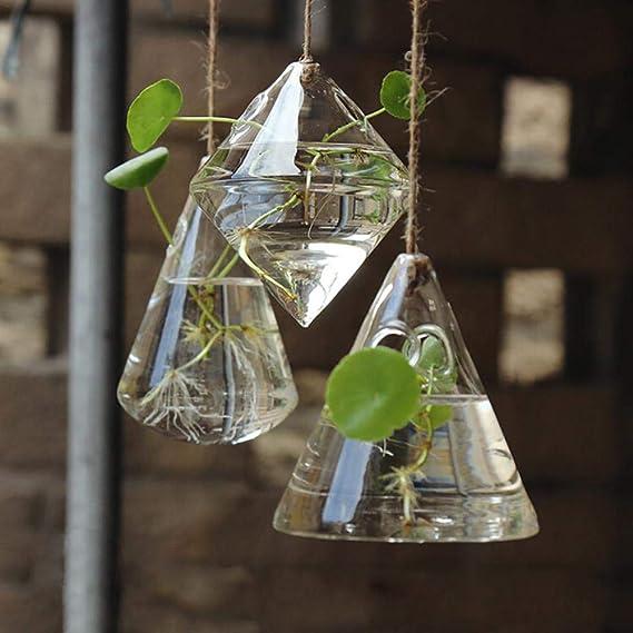 draulic Jardín trabajo alta moldeada geométrica transparente cristal colgante Jarrón Moderno Agua pflanzer Home decorativa pared colgantes botella: ...