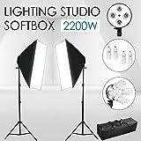 VOLKWELL 2200W Photo Studio Soft Box Continuous Light Video Softbox Lighting Stand Kit 2pcs Softbox + 8pcs 5500K 55W Daylight Bulb+2pcs 4in1 E27 Bulb Socket+2pcs 210CM Light Stand and Carrying Bag