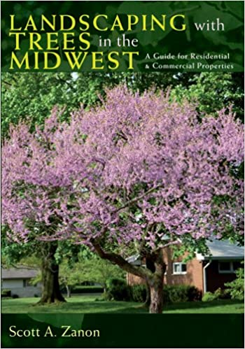 Landscaping With Trees In The Midwest A Guide For Residential And