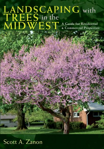 Landscaping With Trees In The Midwest  A Guide For Residential And Commercial Properties