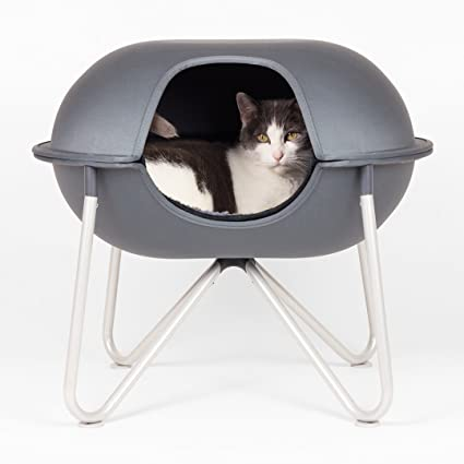 pretty design modern cat bed. Hepper Pod Pet Bed  A Modern Design for Cats and Small Dogs Amazon com