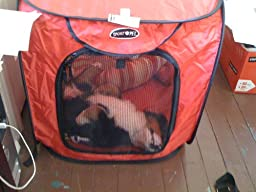 Boots And Barkley Large Dog Kennel