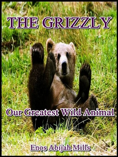 The Grizzly : Our Greatest Wild Animal