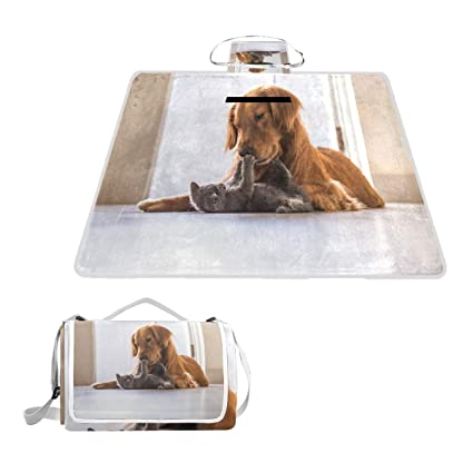 Amazon.com: SLHFPX Golden Retriever - Manta de picnic grande ...