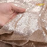 LQIAO Champagne Sequin Curtain Panel