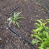 ECOgardener Extra Heavy Duty Galvanized Weed